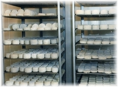 fromagerie5